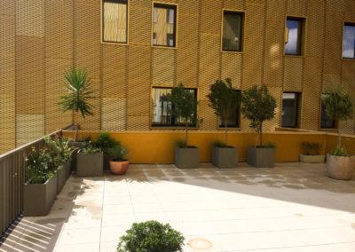 Création de jardins sur le toit d'un immeuble à Montpellier