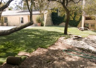 Pose de pelouse en rouleau ou plaque