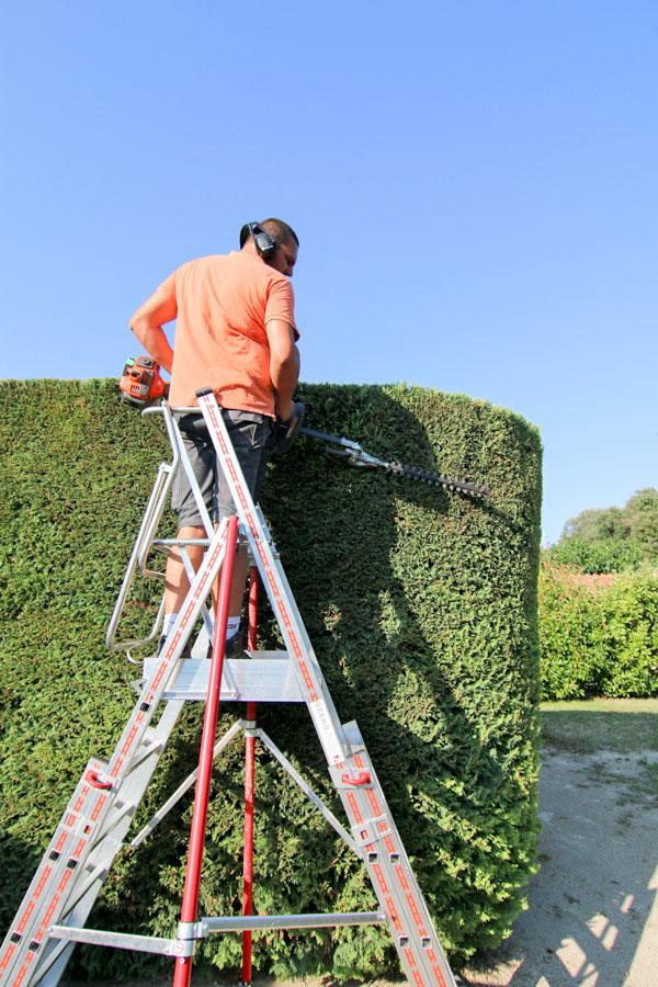 Des professionnels pour la taille de vos haies, massifs et arbustes sur le Gard et l'Hérault