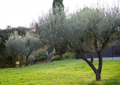 Sur le Gard et l'Hérault, une entreprise au service de vos jardins