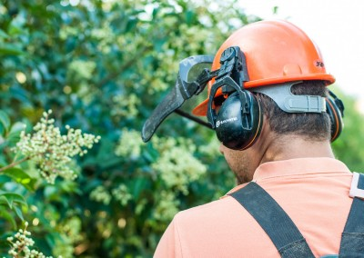 Sur le Gard et l'Hérault, des jardiniers professionnels au service de votre jardin et de tous vos espaces verts
