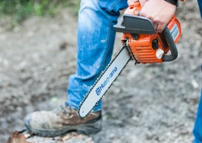 Confiez la taille, l'élagage et la coupe de vos arbres et arbustes à des professionnels