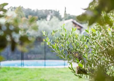 Dans le Gard ou l'Hérault, des spécialistes du jardinage à votre service