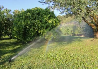 Arrosage manuel et automatisé de vos jardins et espaces verts