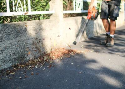 Ramassage de vos feuilles et nettoyage de vos extérieurs