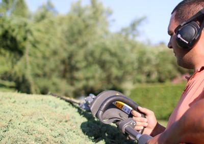 Taille de vos haies, massifs et arbustes sur le Gard et l'Hérault