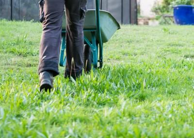 Des jardiniers professionnels au service de vos espaces verts gardois ou héraultais