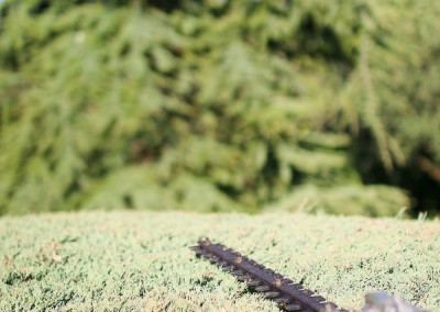 Avond & Jardins : les jardiniers et paysagistes pour votre jardin et vos espaces verts sur le Gard et l'Hérault