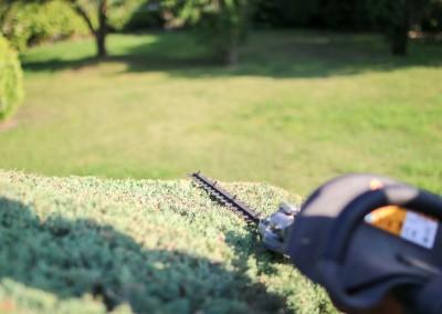 Offrez les services de jardiniers professionnels à votre jardin