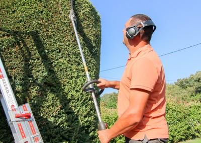 Un professionnel pour l'entretien de votre jardin et de vos espaces verts