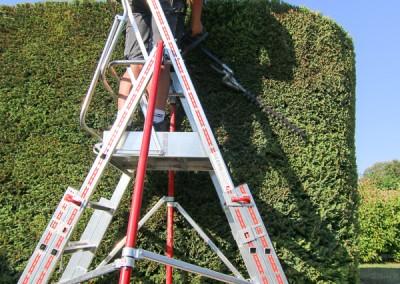 Des professionnels à votre service, sur le Gard et l'Hérault, pour la taille de toutes vos haies, massifs et arbustes
