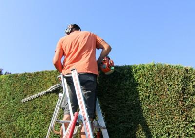 Pour un résultat irréprochable, confiez la taille de vos haies, massifs et arbustes à des jardiniers professionnels