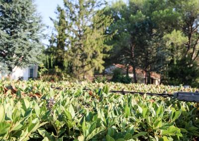 Avond & Jardins, le jardinier paysagiste pour la taille de vos haies, massifs et arbustes, sur l'Hérault et le Gard