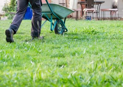 Des jardiniers professionnels au service de vos jardins gardois ou héraultais