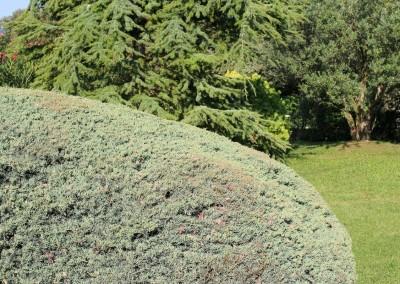 Avond & Jardins, au service de vos jardins et espaces verts dans le Gard et l'Hérault