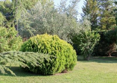 Dans le Gard ou l'Hérault, pour un jardin agréable à vivre, découvrez les services d'Avond & Jardins