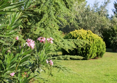 Offrez à votre jardin tous les soins d'un jardinier attentif et appliqué