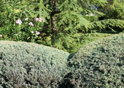 Le spécialiste de l'entretien de votre jardin et de vos espaces verts dans le Gard et l'Hérault