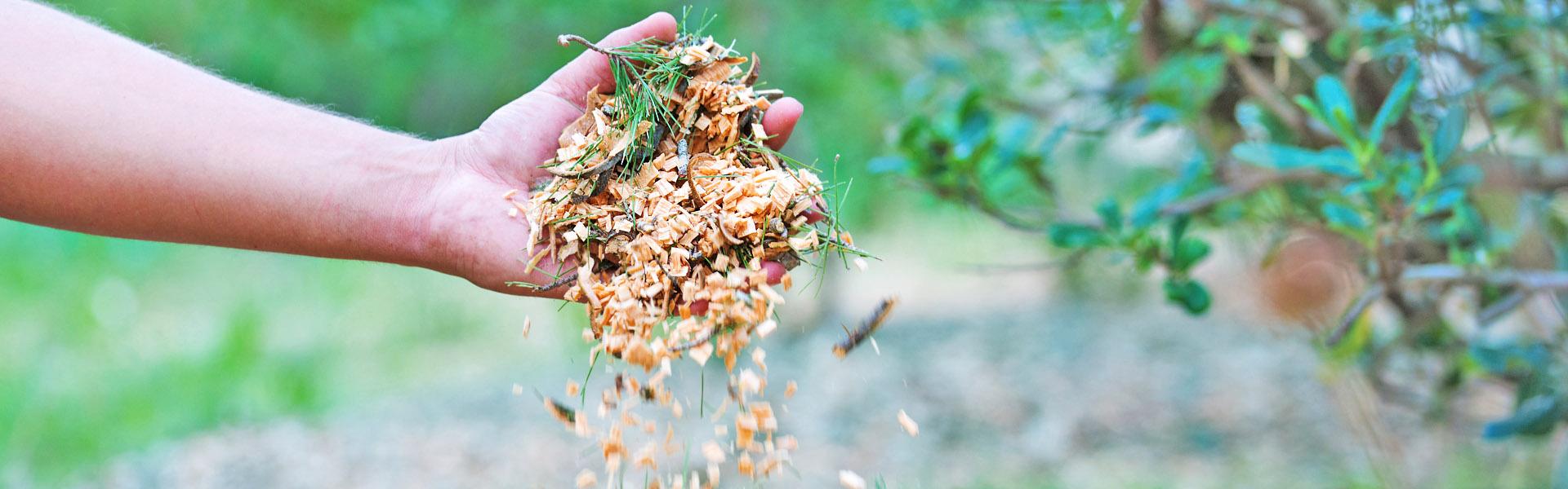 Des paysagistes jardiniers au service de votre jardin et de vos espaces verts sur le Gard et l'Hérault