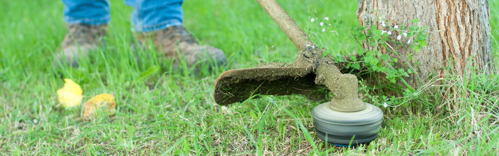 Travaux de débroussaillage dans votre jardin sur le Gard ou l'Hérault