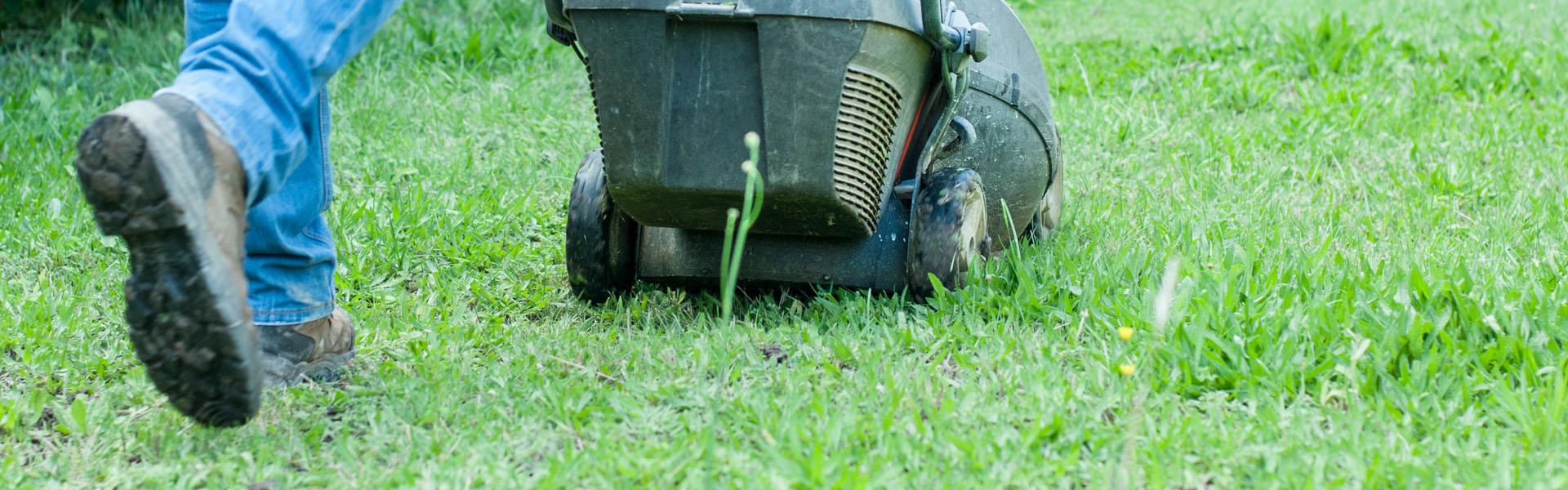 Tonde de vos pelouses sur les départements du Gard et de l'Hérault