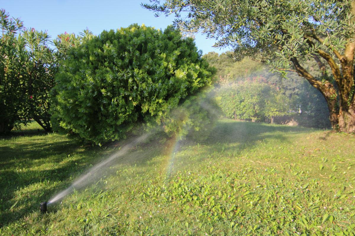Nos services pour votre jardin et tous vos espaces verts for Jardins et services
