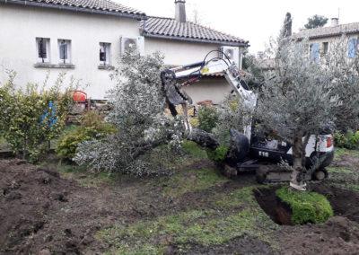 Plantation d'arbres à l'aide d'une minipelle